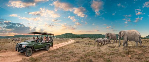 Nuestro Viaje Safari Express